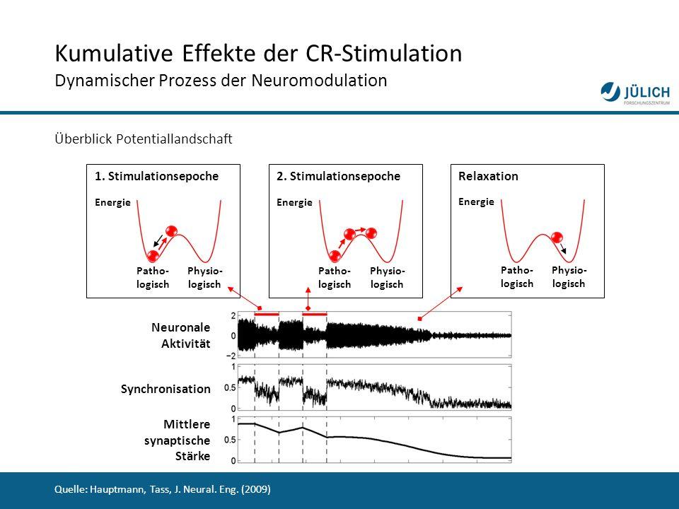 Kumulative Effekte der CR-Stimulation Dynamischer Prozess der Neuromodulation