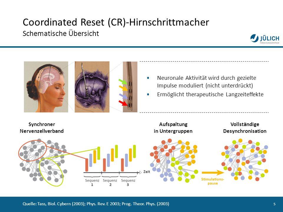 Coordinated Reset (CR)-Hirnschrittmacher Schematische Übersicht