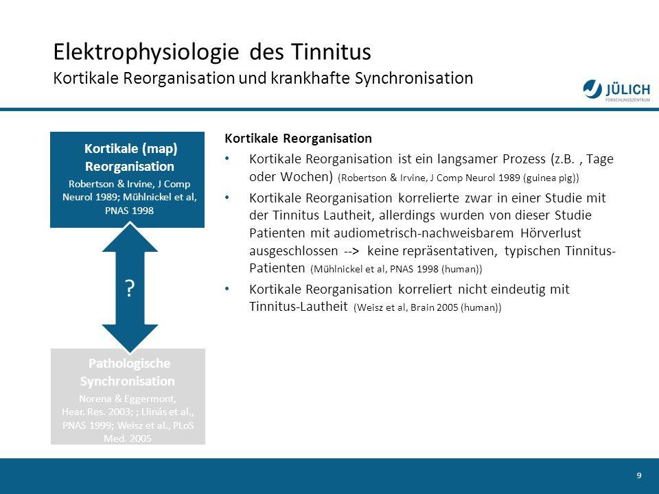 Elektrophysiologie des Tinnitus Kortikale Reorganisation und krankhafte Synchronisation