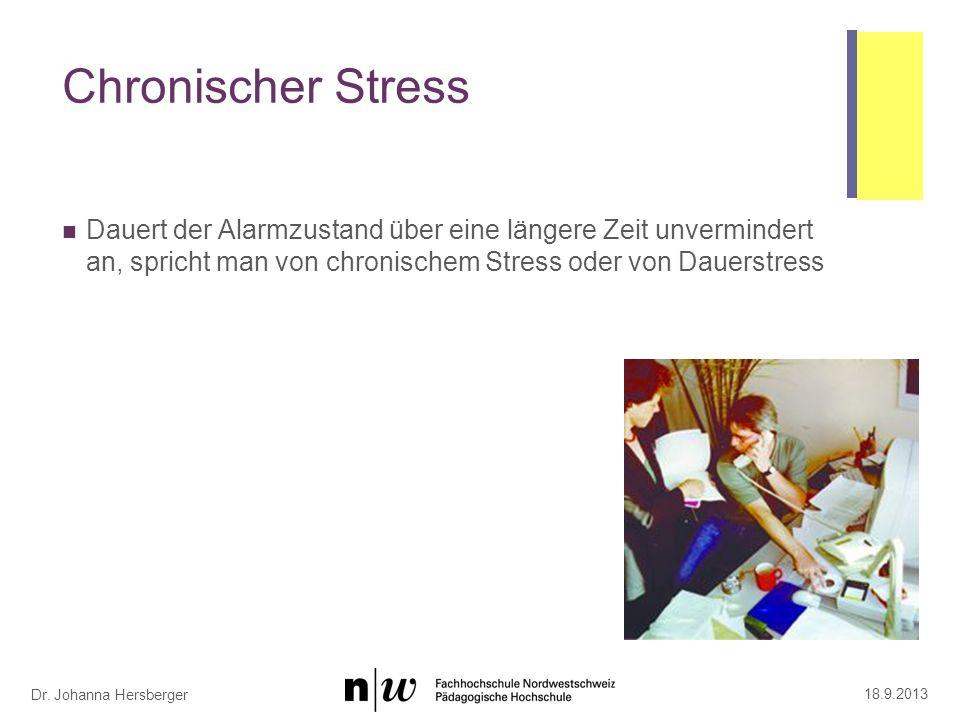 Dauerstress und Verletzlichkeit