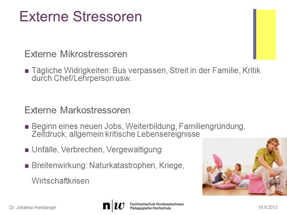 Schulische Stressoren