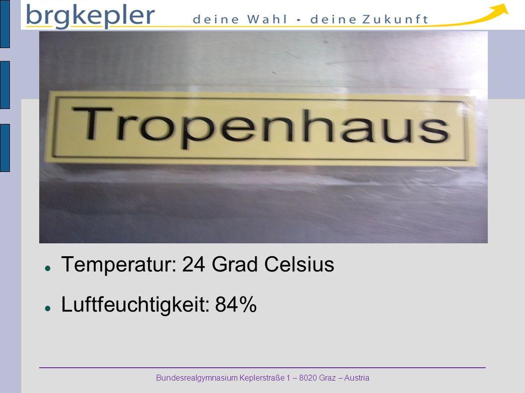 Temperatur: 24 Grad Celsius