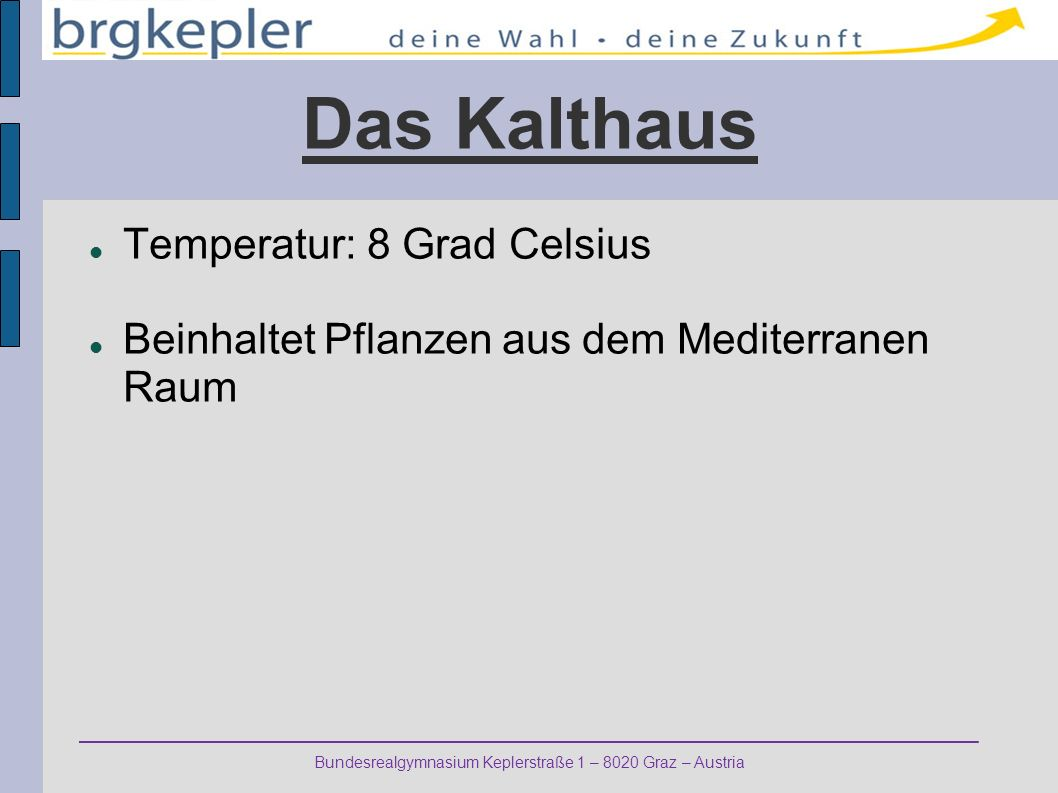 Das Kalthaus Temperatur: 8 Grad Celsius