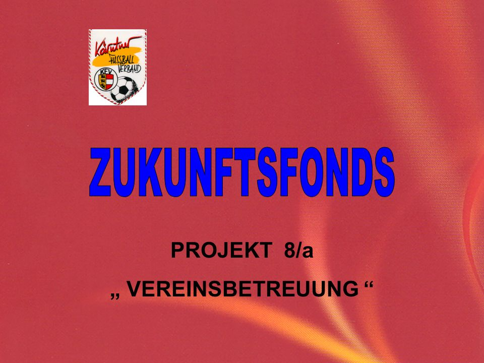 "ZUKUNFTSFONDS PROJEKT 8/a "" VEREINSBETREUUNG"