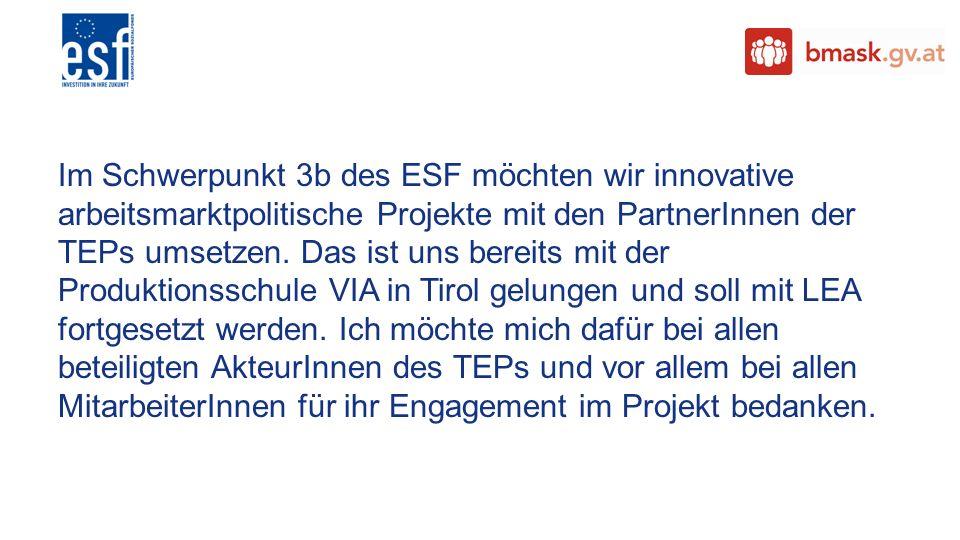 Im Schwerpunkt 3b des ESF möchten wir innovative arbeitsmarktpolitische Projekte mit den PartnerInnen der TEPs umsetzen.