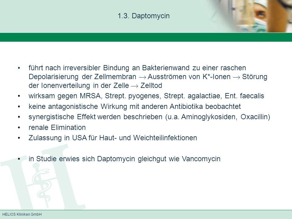 1.3. Daptomycin