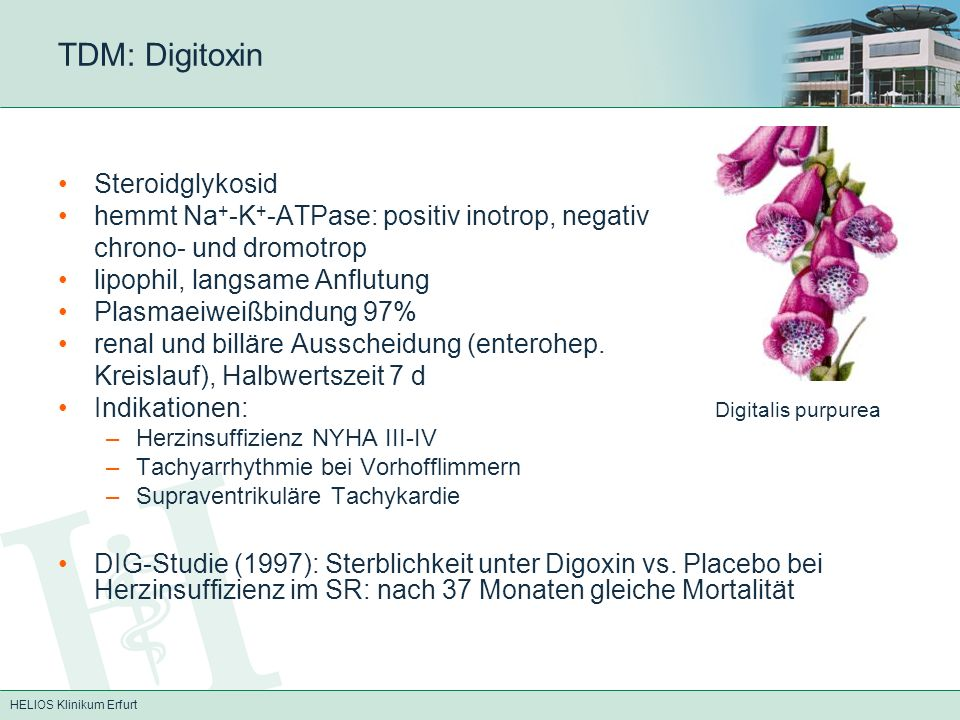 TDM: Digitoxin Steroidglykosid