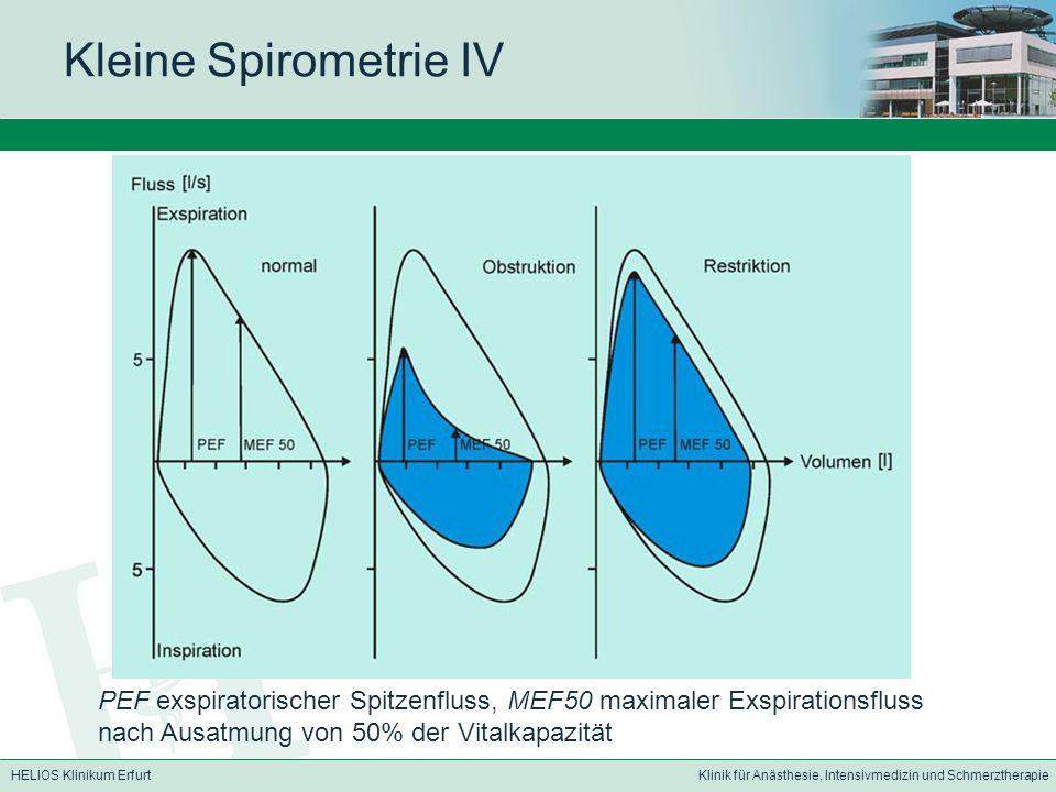 Kleine Spirometrie IV PEF exspiratorischer Spitzenfluss, MEF50 maximaler Exspirationsfluss nach Ausatmung von 50% der Vitalkapazität.