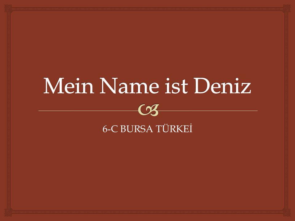 Mein Name ist Deniz 6-C BURSA TÜRKEİ