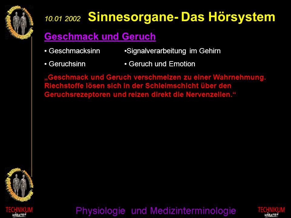 Geschmack und Geruch 10.01 2002 Sinnesorgane- Das Hörsystem