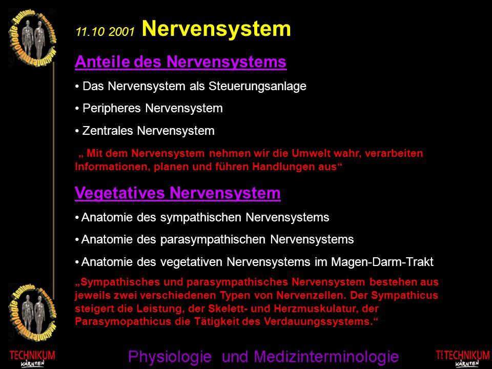 Anteile des Nervensystems