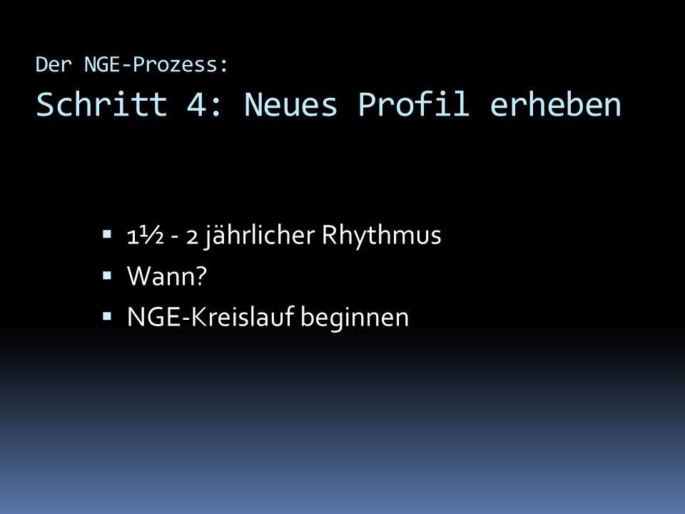 Der NGE-Prozess: Schritt 4: Neues Profil erheben