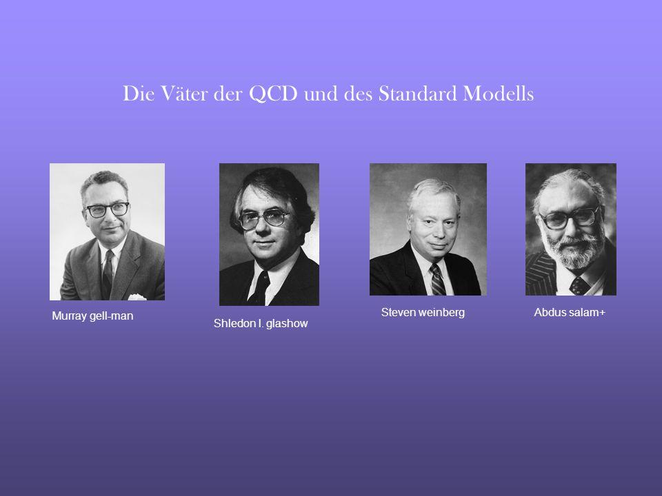 Die Väter der QCD und des Standard Modells
