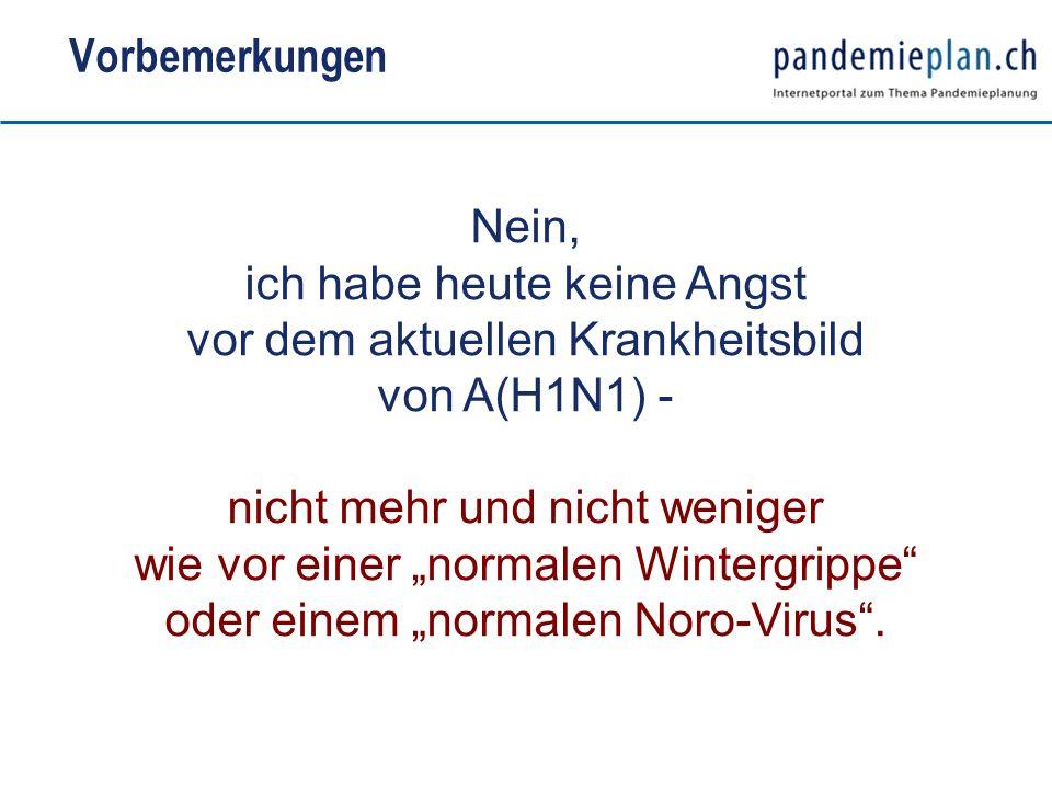 Vorbemerkungen Nein, ich habe heute keine Angst vor dem aktuellen Krankheitsbild von A(H1N1) -