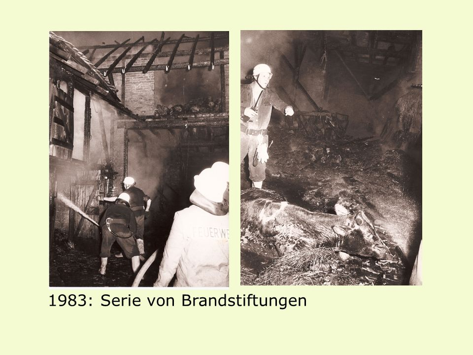 1983: Serie von Brandstiftungen