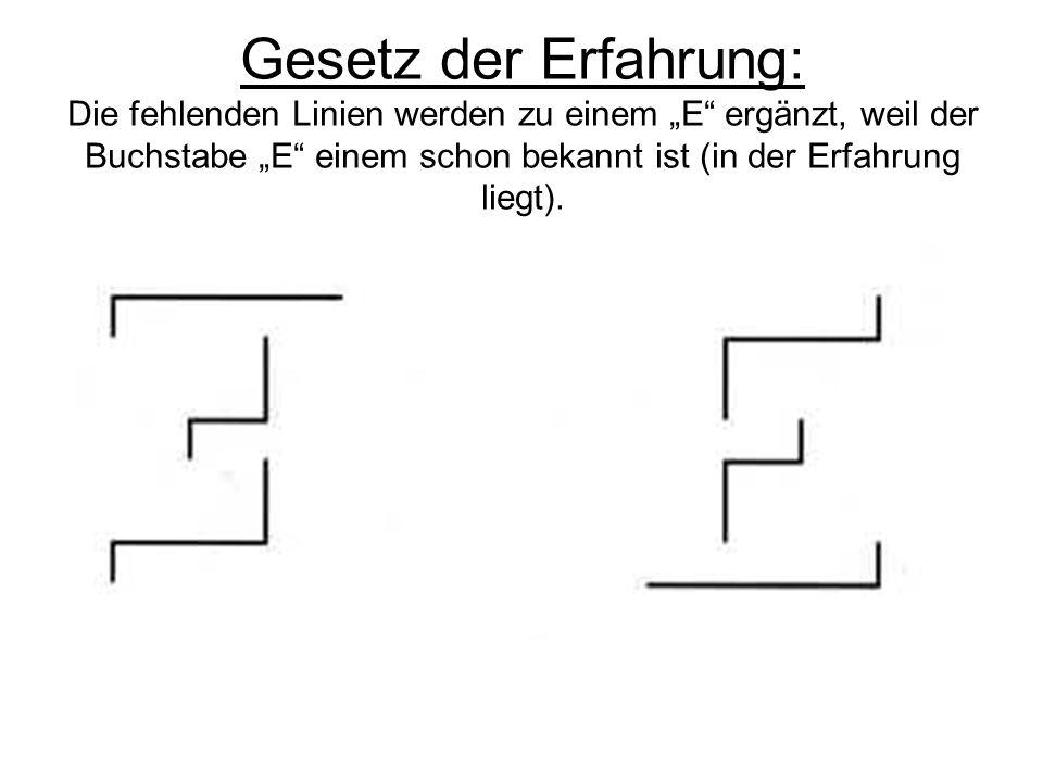 """Gesetz der Erfahrung: Die fehlenden Linien werden zu einem """"E ergänzt, weil der Buchstabe """"E einem schon bekannt ist (in der Erfahrung liegt)."""
