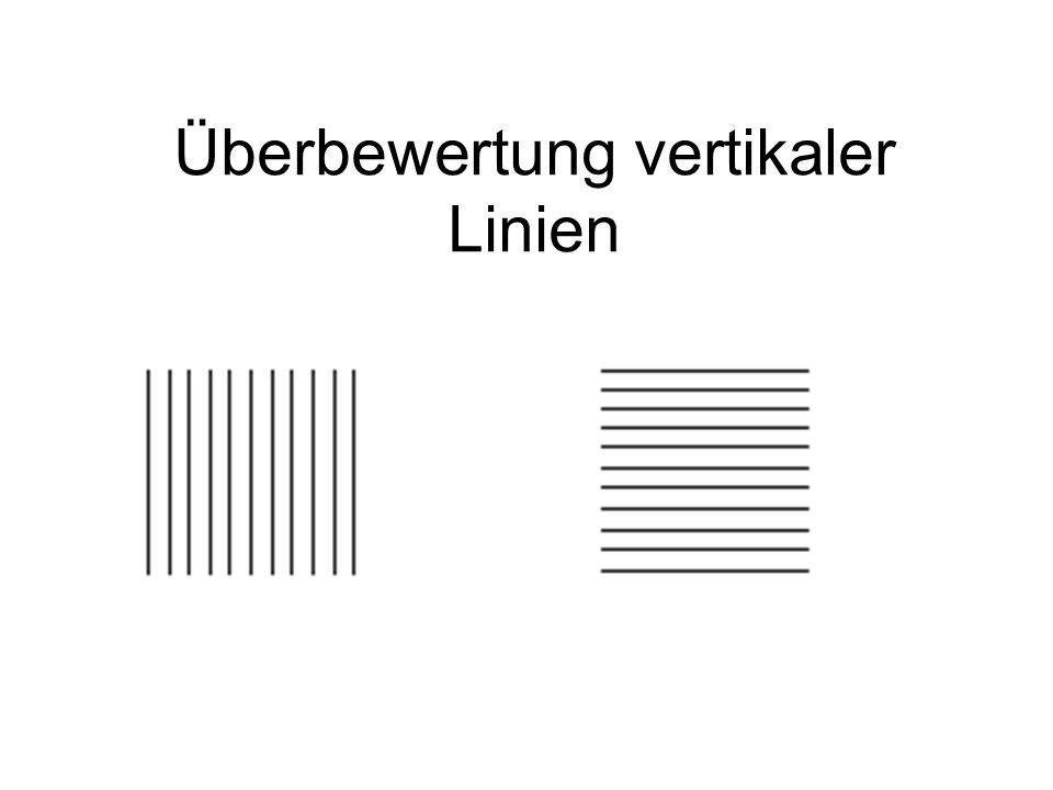 Überbewertung vertikaler Linien