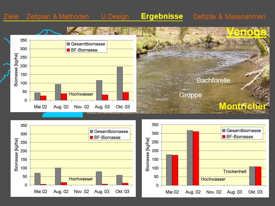Venoge Montricher Biomasse