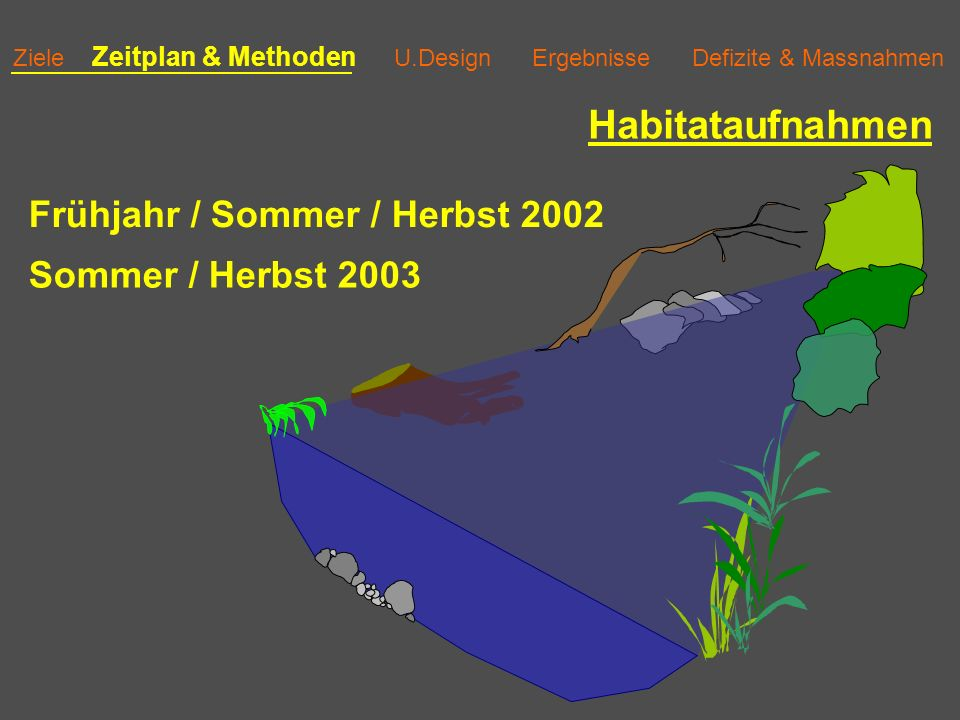 Habitataufnahmen Frühjahr / Sommer / Herbst 2002 Sommer / Herbst 2003