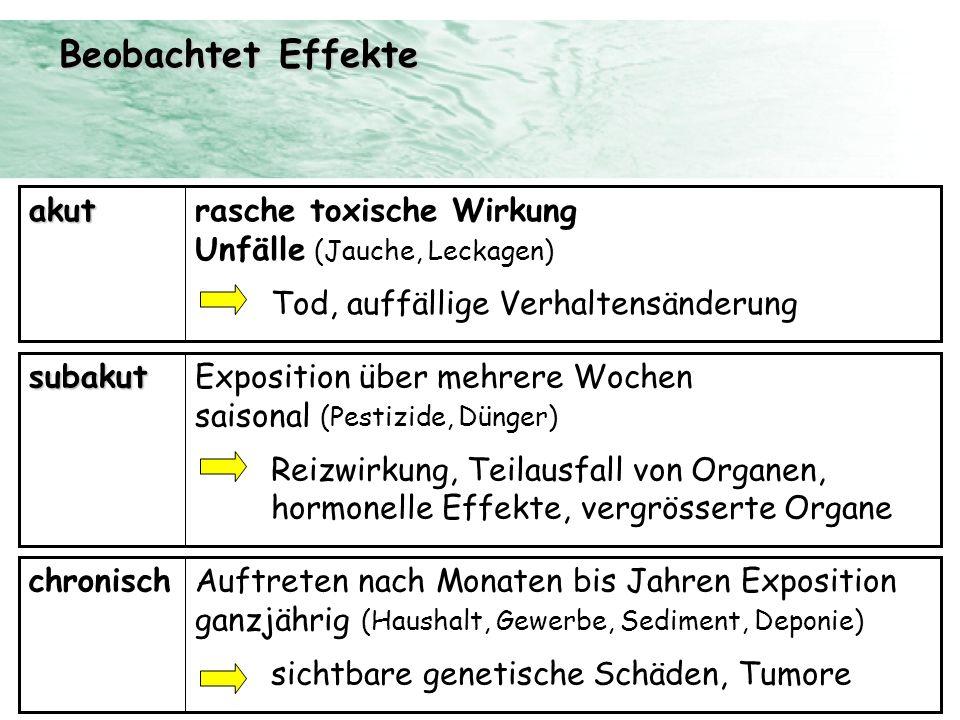 Beobachtet Effekte rasche toxische Wirkung Unfälle (Jauche, Leckagen)