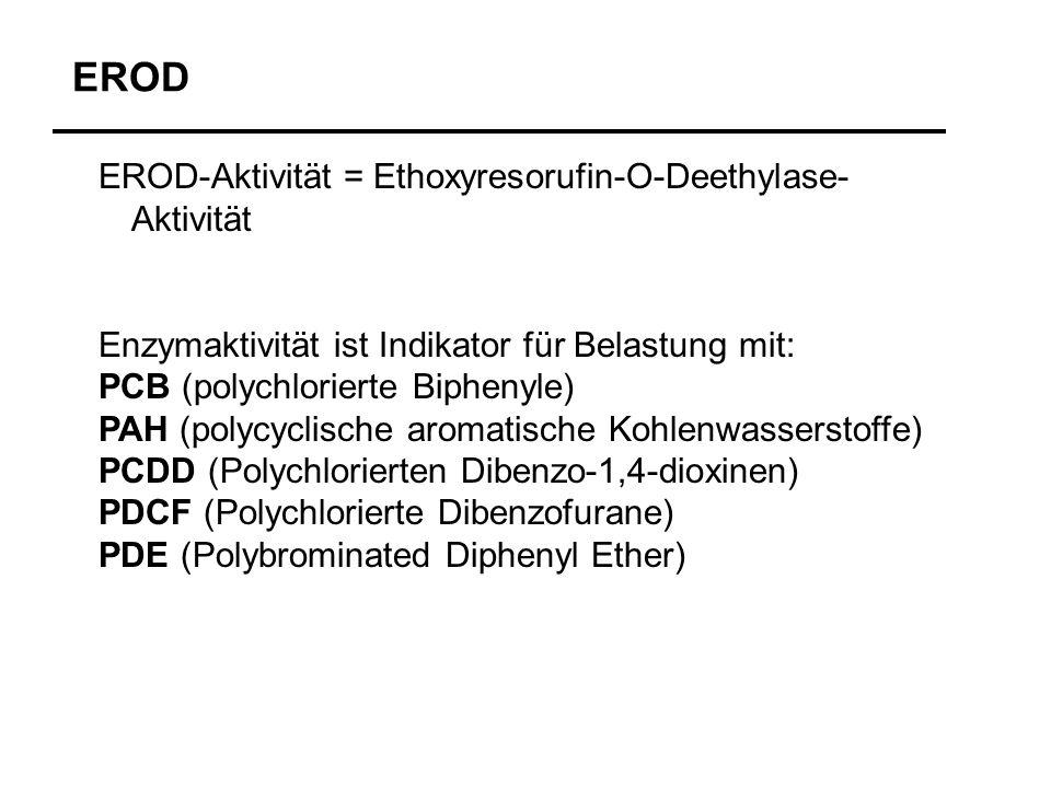 EROD EROD-Aktivität = Ethoxyresorufin-O-Deethylase-Aktivität