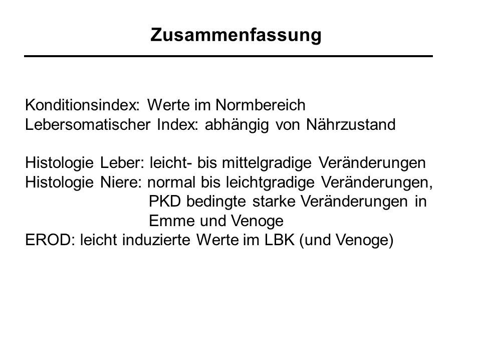 Zusammenfassung Konditionsindex: Werte im Normbereich
