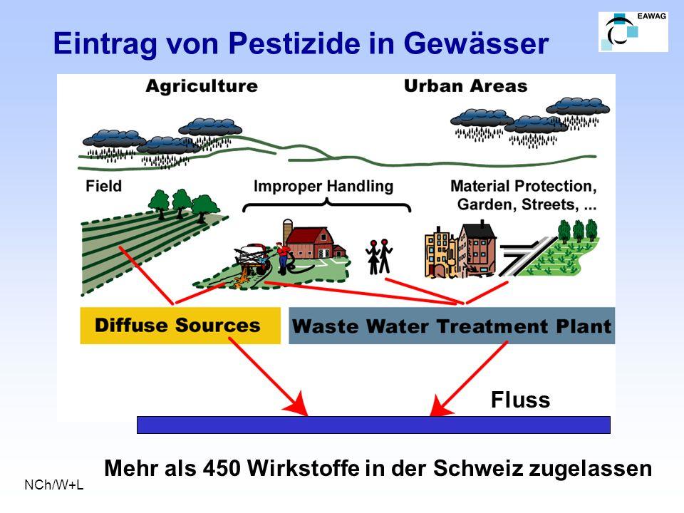 Eintrag von Pestizide in Gewässer