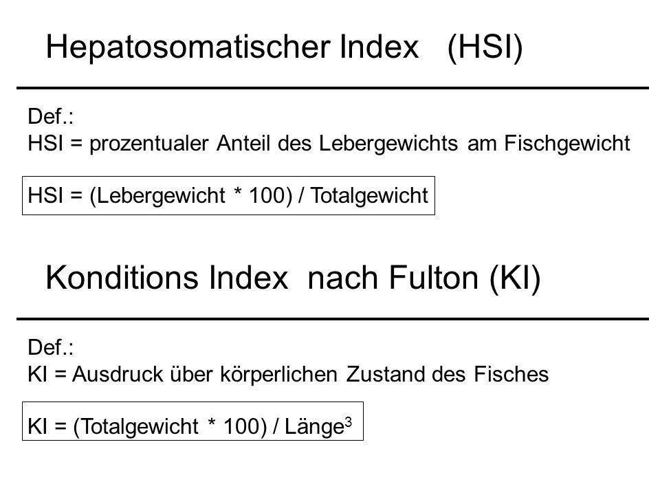 Hepatosomatischer Index (HSI)
