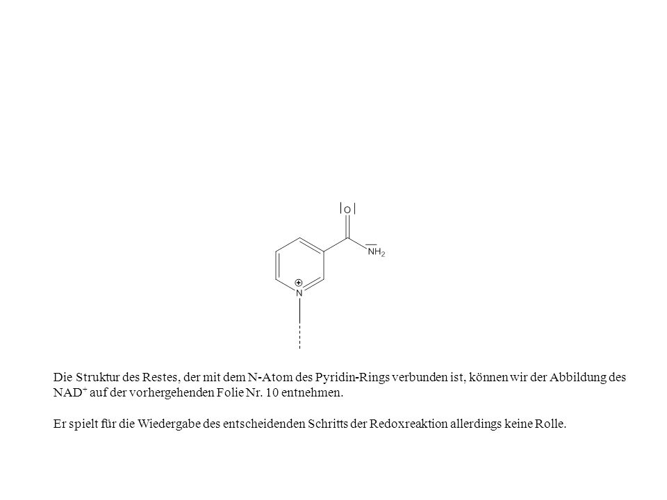 Die Struktur des Restes, der mit dem N-Atom des Pyridin-Rings verbunden ist, können wir der Abbildung des NAD+ auf der vorhergehenden Folie Nr. 10 entnehmen.