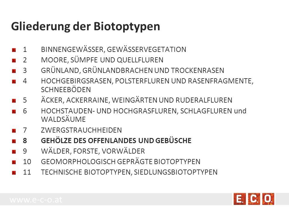 Gliederung der Biotoptypen