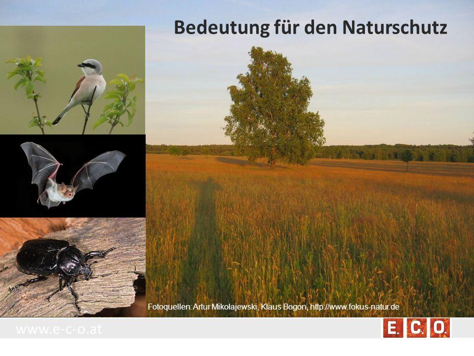 Bedeutung für den Naturschutz