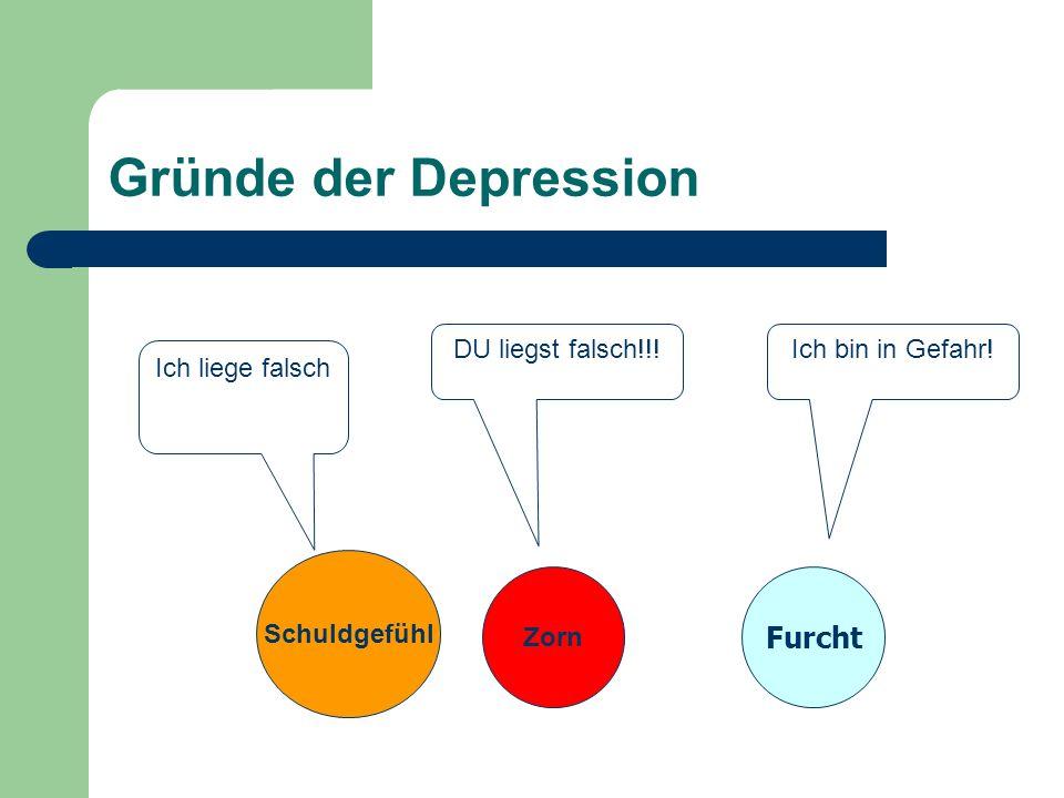 Gründe der Depression Furcht DU liegst falsch!!! Ich bin in Gefahr!