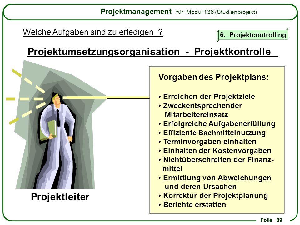 Projektumsetzungsorganisation - Projektkontrolle