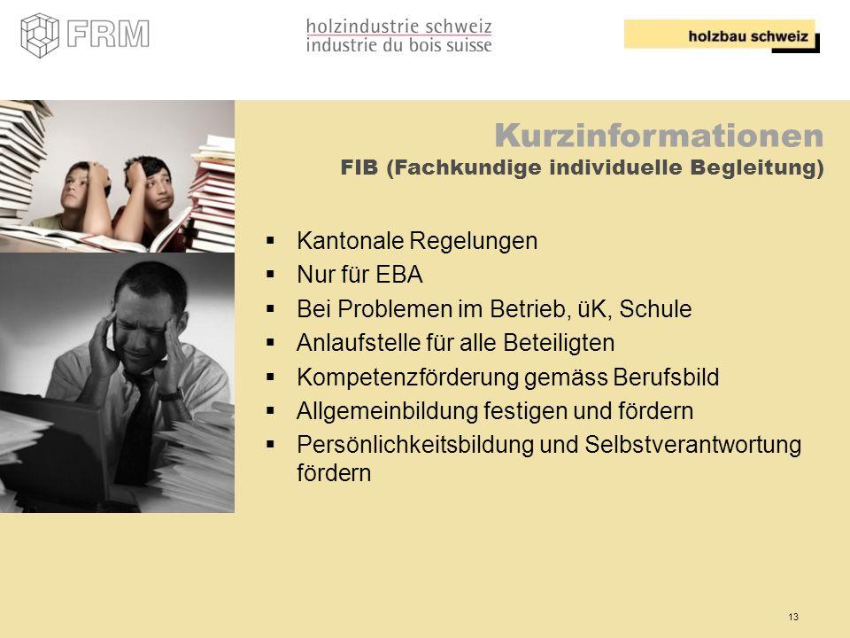 Kurzinformationen FIB (Fachkundige individuelle Begleitung)