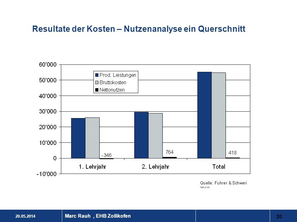 Resultate der Kosten – Nutzenanalyse ein Querschnitt