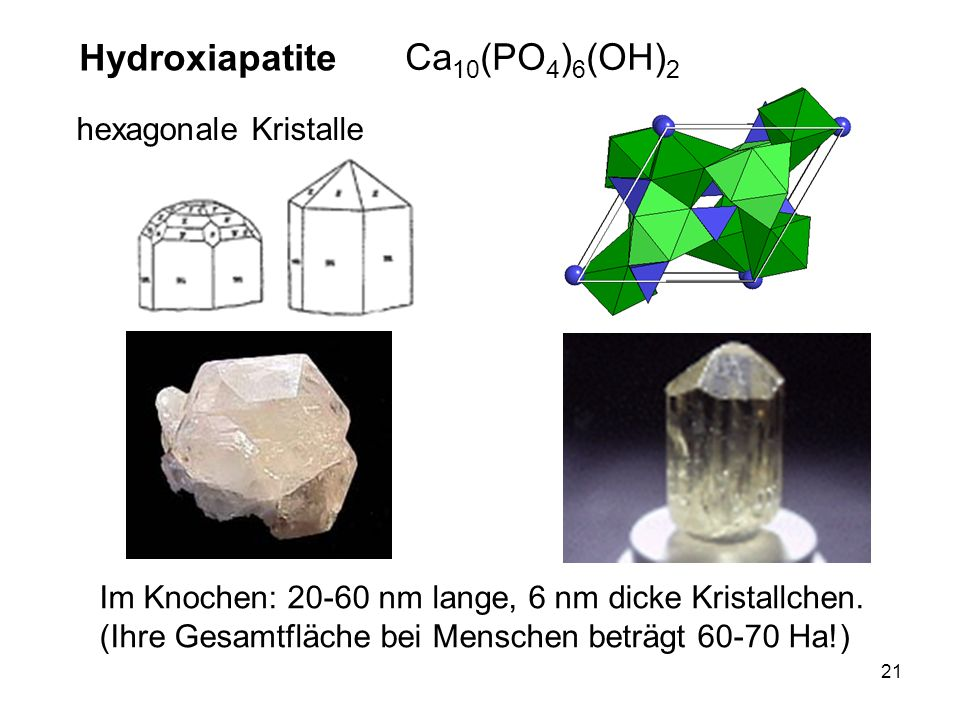 Hydroxiapatite Ca10(PO4)6(OH)2 hexagonale Kristalle