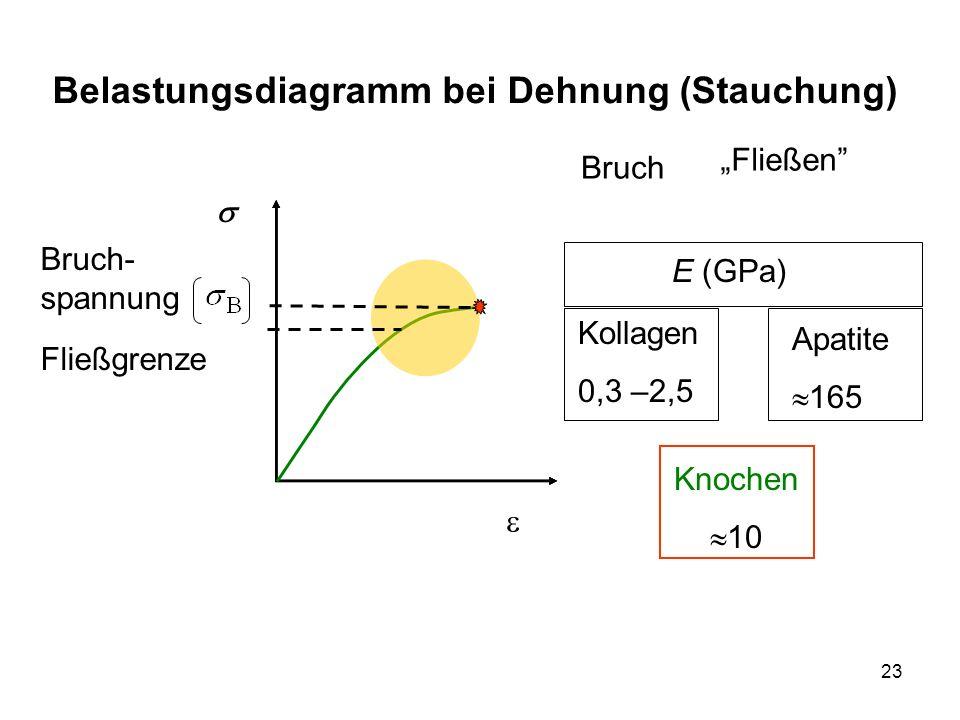 Belastungsdiagramm bei Dehnung (Stauchung)