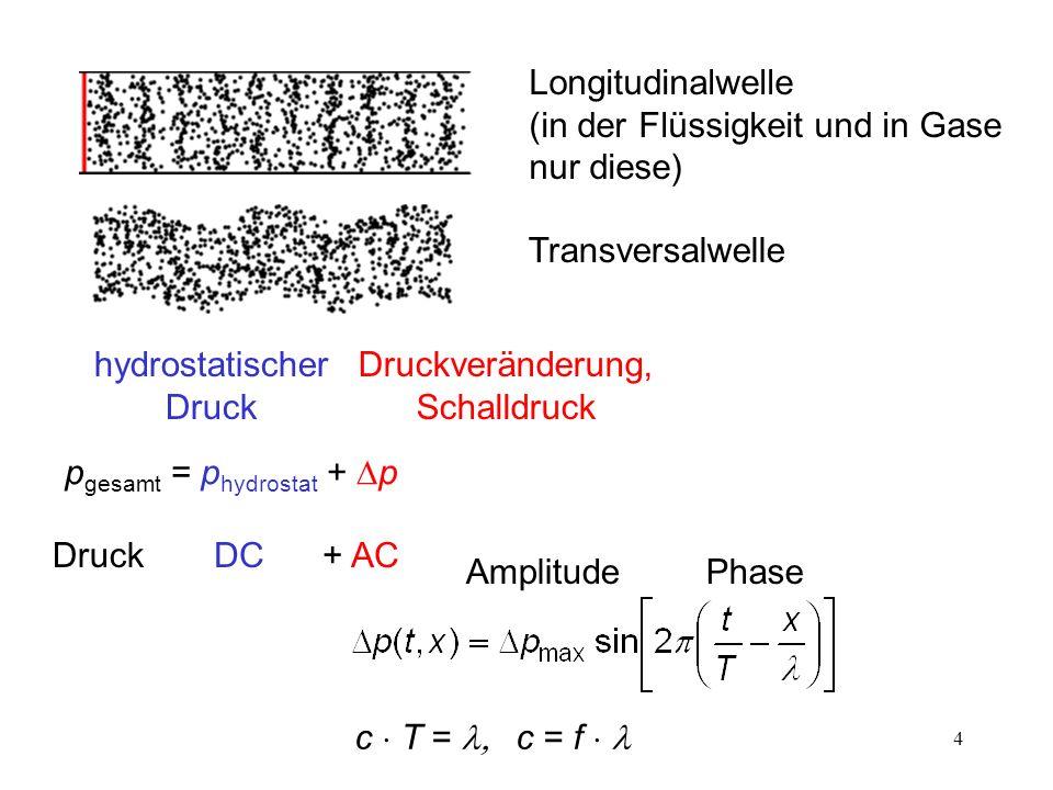 Longitudinalwelle (in der Flüssigkeit und in Gase nur diese)