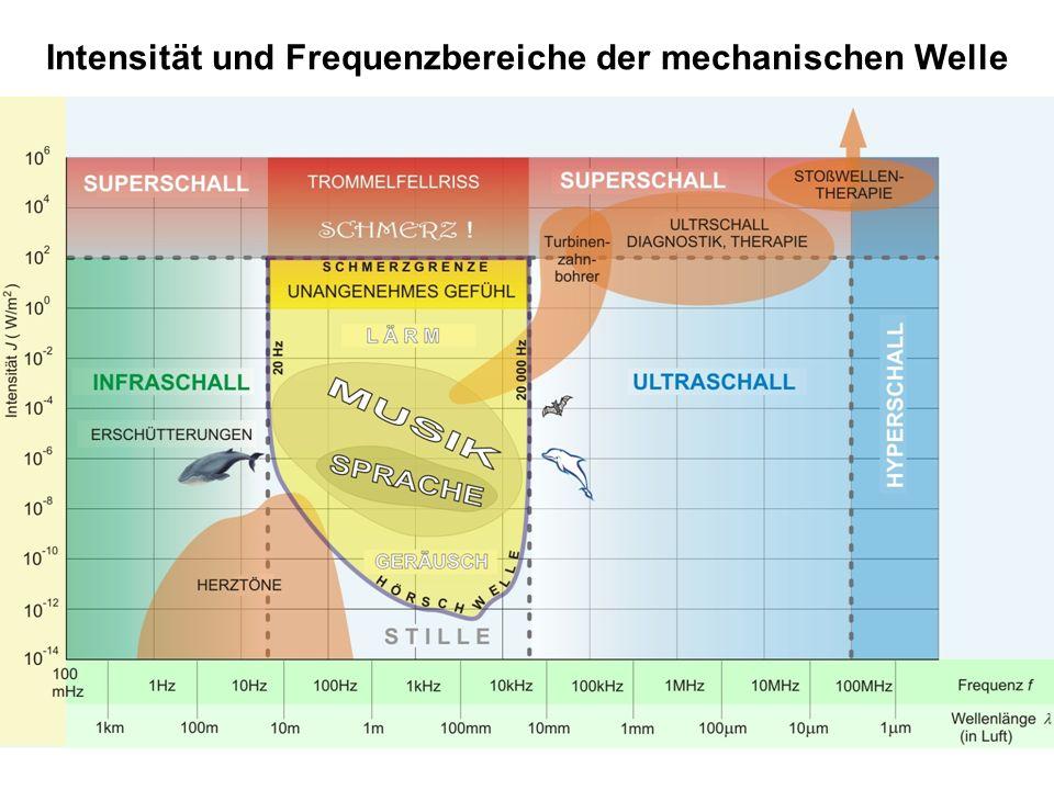 Intensität und Frequenzbereiche der mechanischen Welle