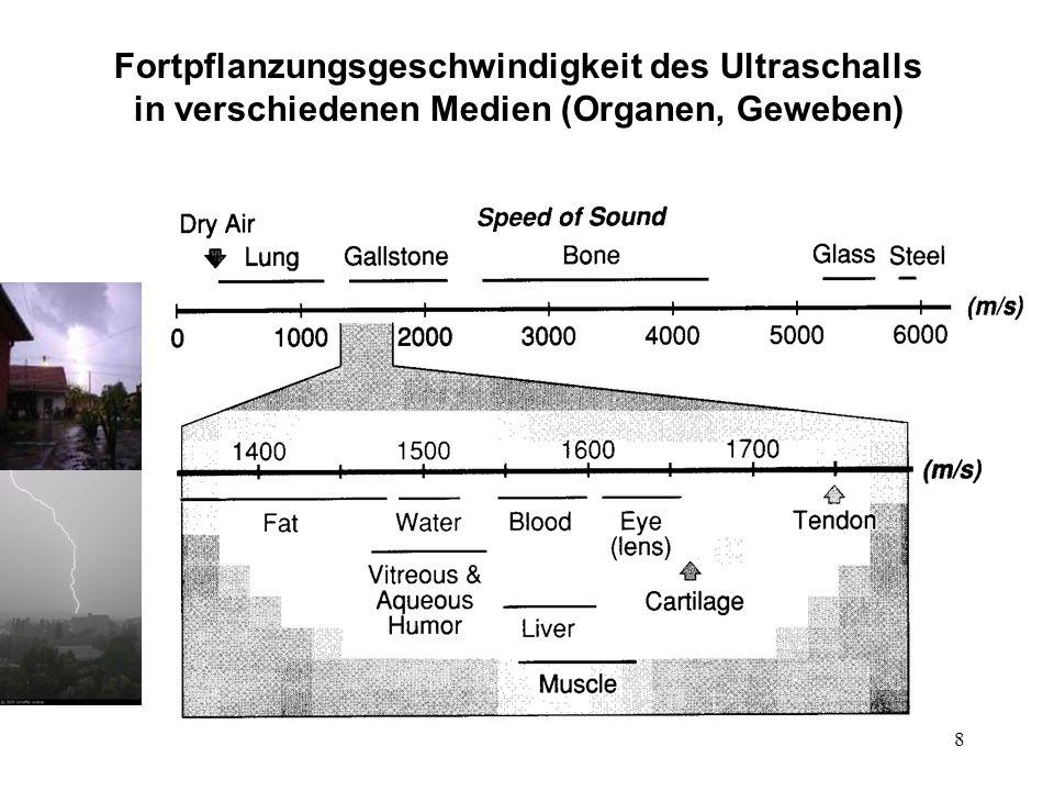Fortpflanzungsgeschwindigkeit des Ultraschalls in verschiedenen Medien (Organen, Geweben)