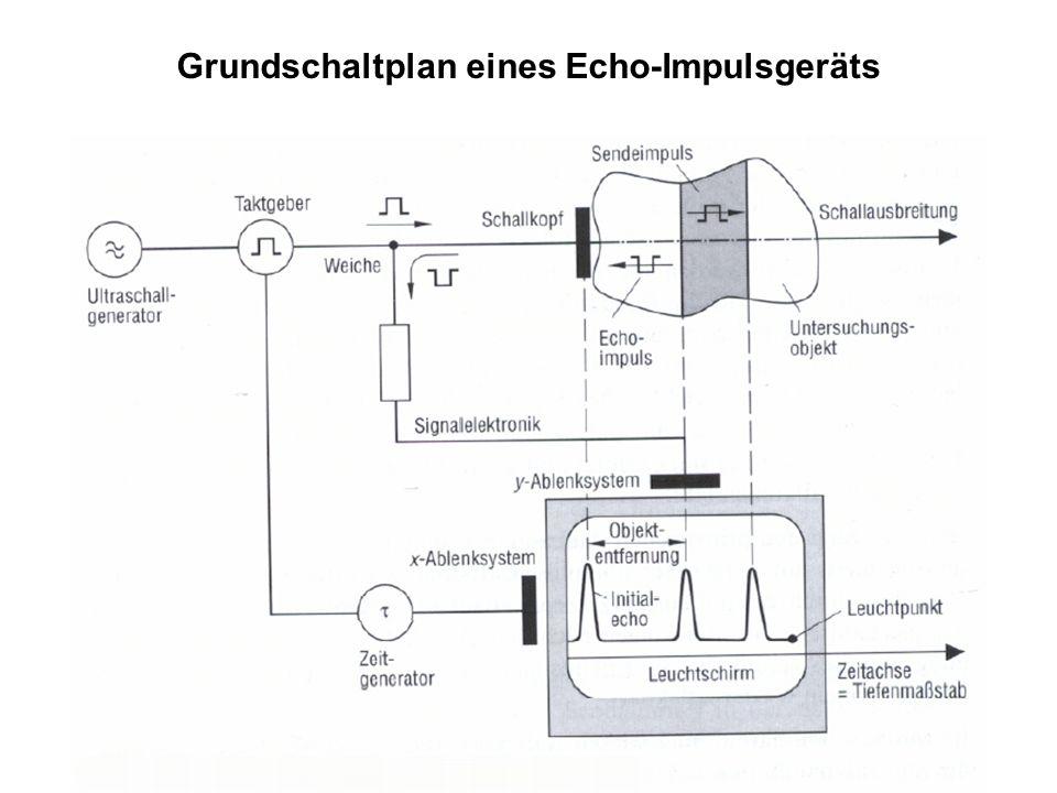 Grundschaltplan eines Echo-Impulsgeräts