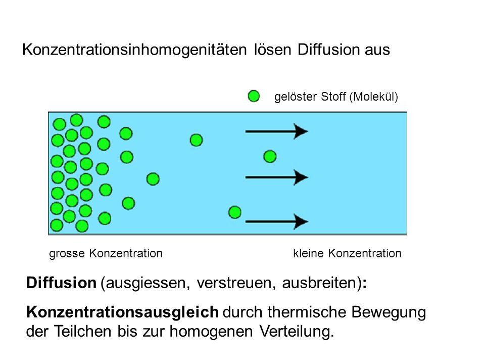 Konzentrationsinhomogenitäten lösen Diffusion aus