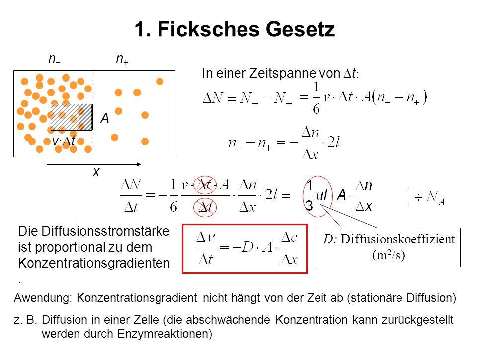 D: Diffusionskoeffizient (m2/s)