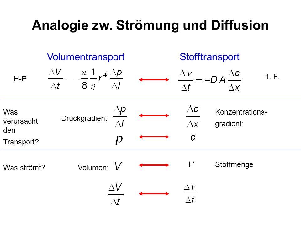 Analogie zw. Strömung und Diffusion