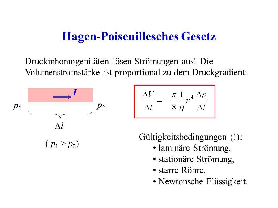 Hagen-Poiseuillesches Gesetz