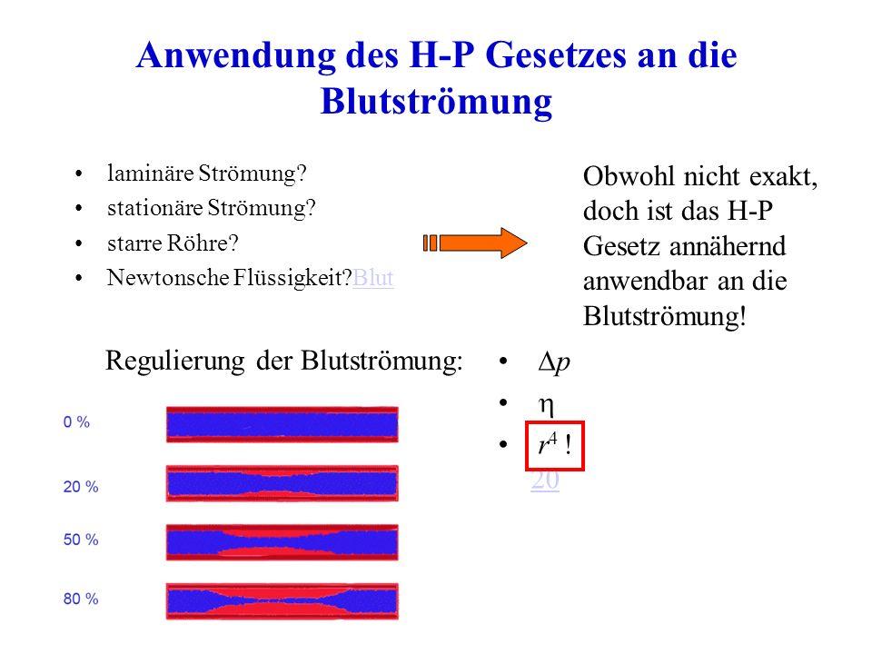 Anwendung des H-P Gesetzes an die Blutströmung