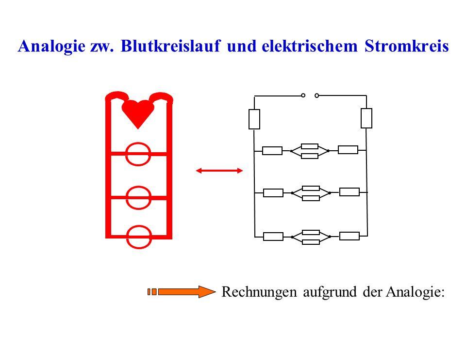 Analogie zw. Blutkreislauf und elektrischem Stromkreis