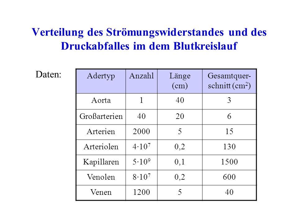 Verteilung des Strömungswiderstandes und des Druckabfalles im dem Blutkreislauf