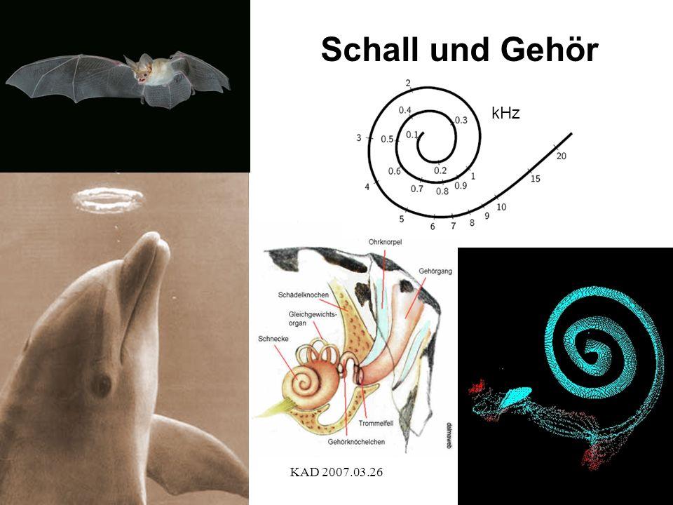 Schall und Gehör kHz KAD 2007.03.26