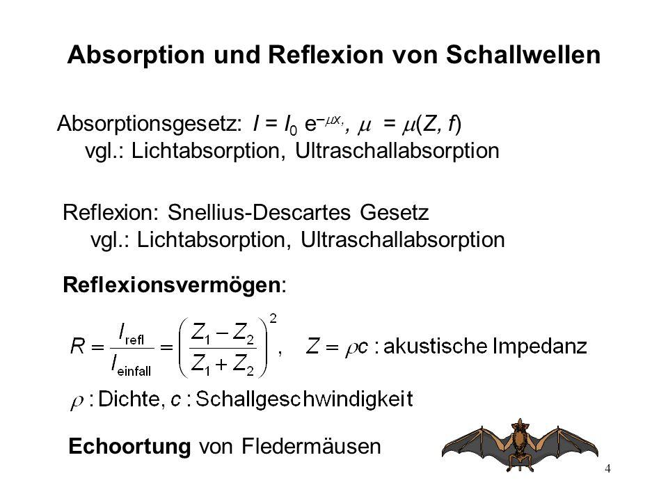 Absorption und Reflexion von Schallwellen